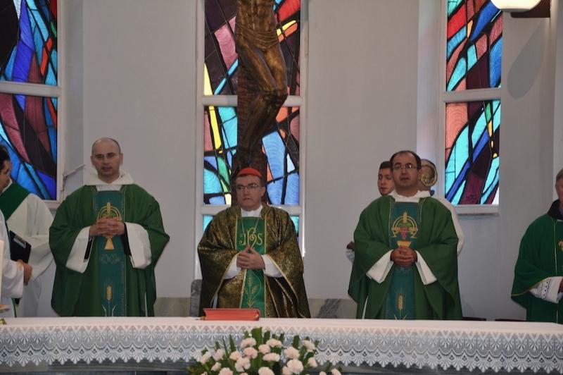 Kardinal vinko ante oltar  large
